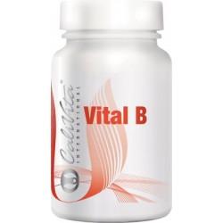 Vital B - 90 Tablete